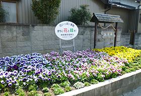 桝塚東町福寿会花壇