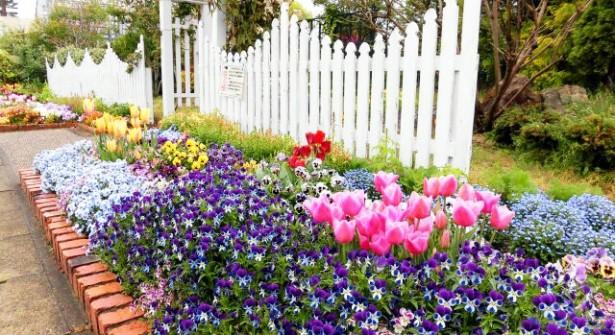 西山公園 四季の花園(春)