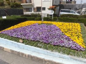 花のあるまちづくりコンテスト作品